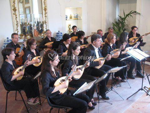 L'orchestra a plettro