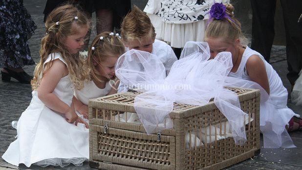 Giochi bambini al matrimonio
