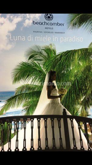 """Cataloghi """"Luna di Miele"""""""