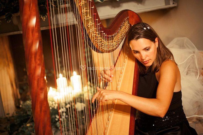 Serena Vizzutti Arpista