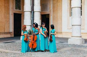 Venus Quartett