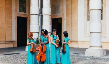 Venus Quartett 1