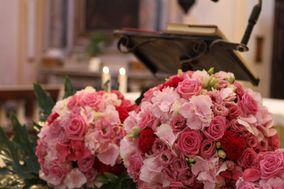 Fiori e Piante Graziella