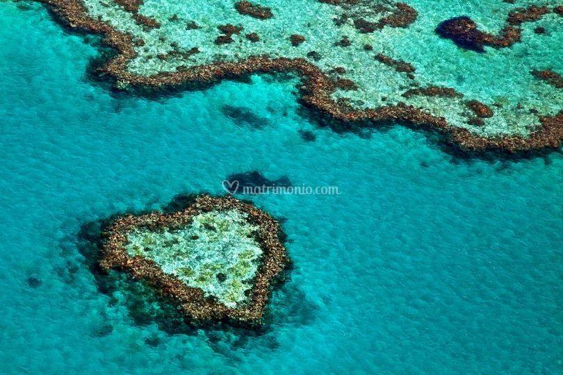 Hardy Reef Australia