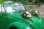 Maggiolino green