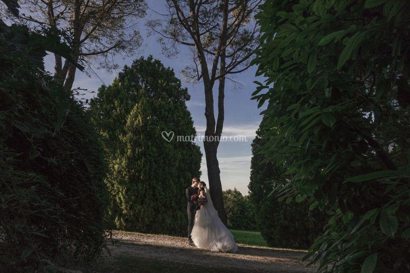 Vincenzo Pioggia Fotografo