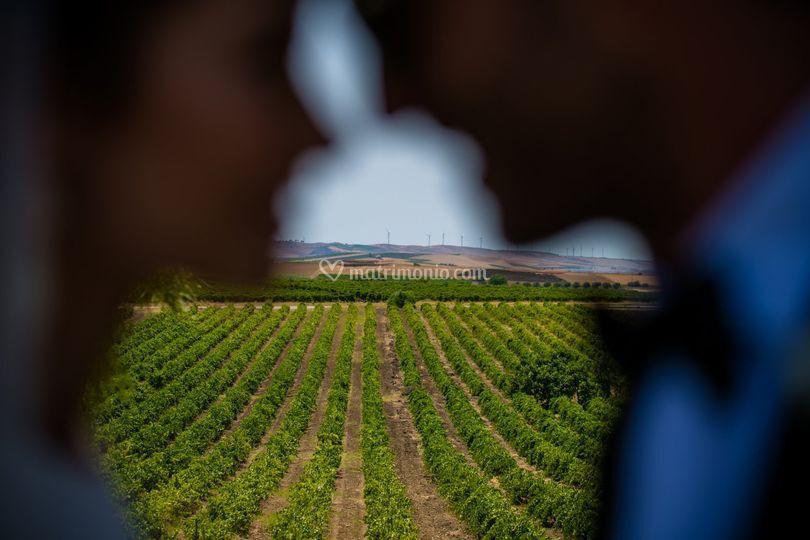 Fotografo-Baglio-Borgesati