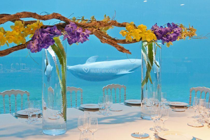 Acquario di genova costa edutainment for Decorazioni acquario
