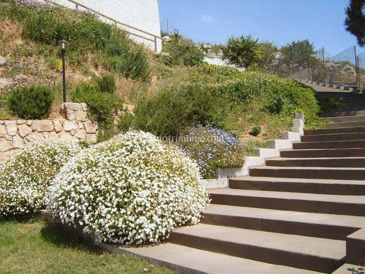 Scalinata giardino
