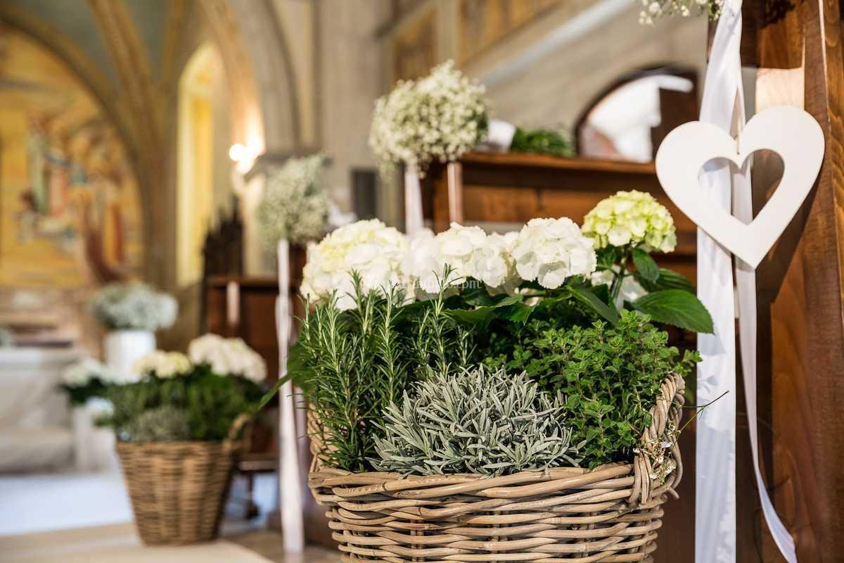 Bouquet Sposa Erbe Aromatiche.Erbe Aromatiche Di Catina Flora Foto 16