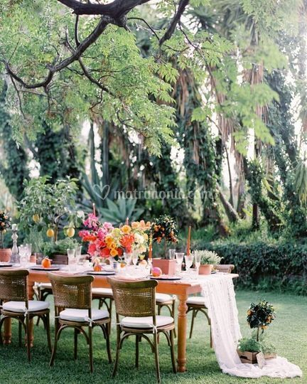 W.E Concept - Weddings and Events.