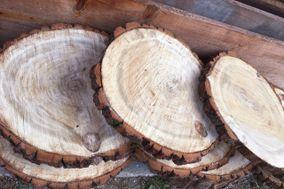 Il legno che visse due volte