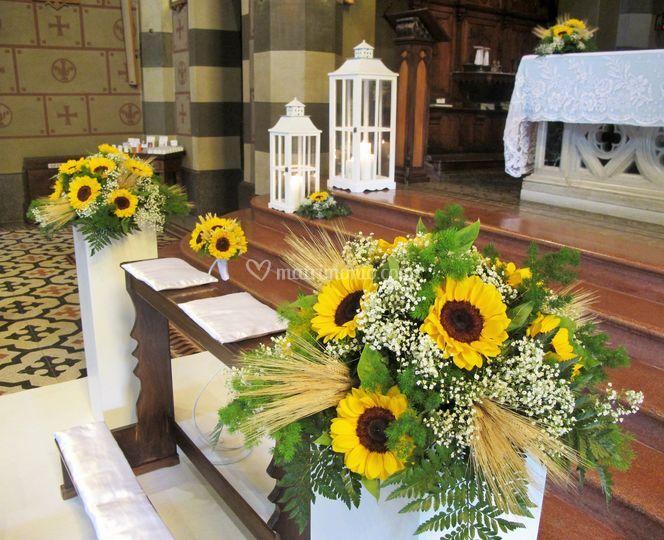 Matrimonio Girasoli E Spighe : Girasoli e spighe di sala fiori piante foto