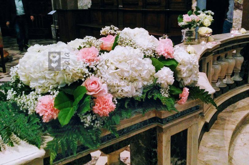 Fiori Ortensie Bianche : Sala fiori e piante