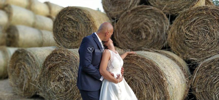 Teresa Raitano Wedding and Event Planner