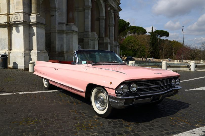 Cadillac Rosa Elvis