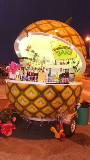 Hawaiiananas bar