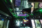 Noleggio disco bus per party