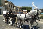 Carrozza con 2 cavalli
