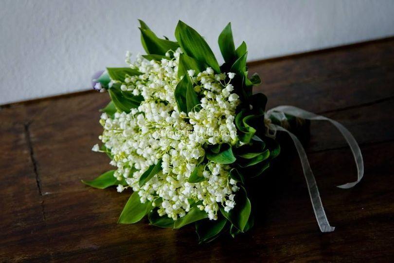 I fiori di d&g