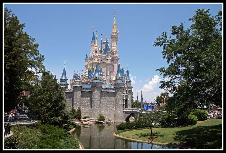 Walt Disney - Orlando