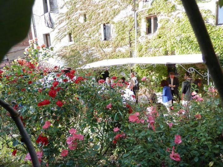 Veranda con roseto
