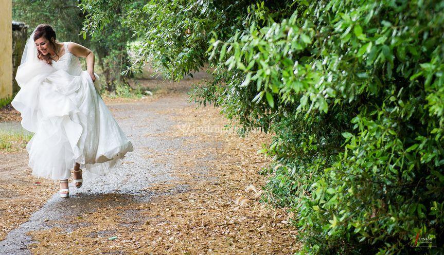 focale di antonio epifani On sposa che corre