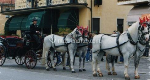 Tiro a 4 cavalli