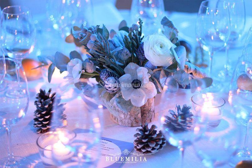 Bluemilia fiori invernali