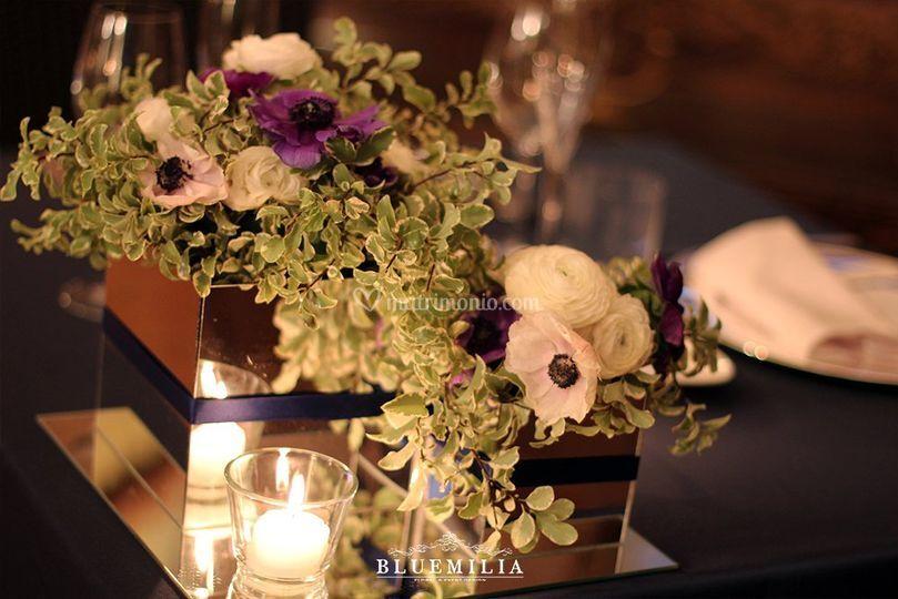 Bluemilia fiori e specchi