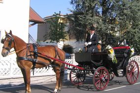 Cristian Sposi in Carrozza