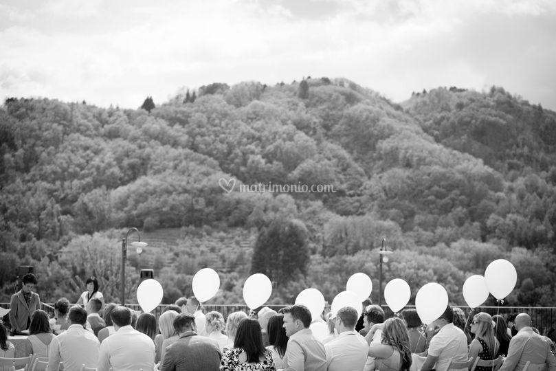 Master Dream - Total Wedding