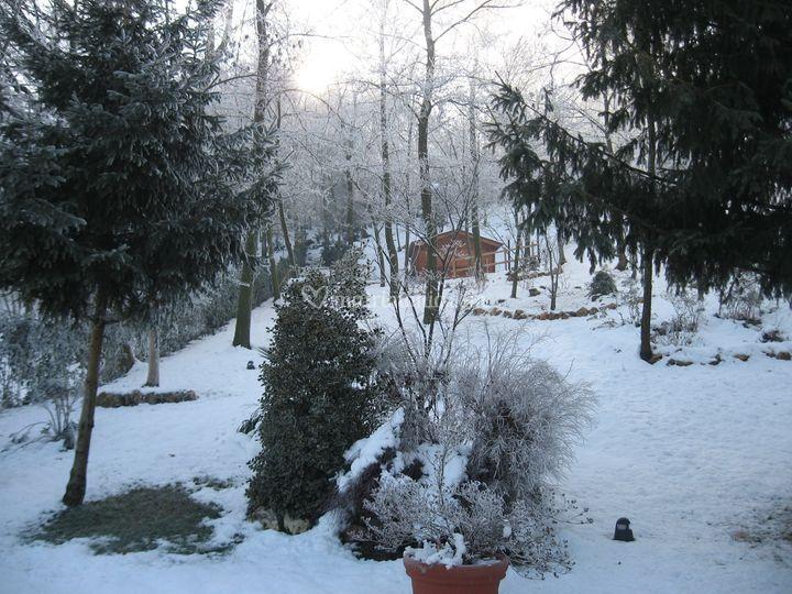 Giardino D Inverno Ristorante Milano : Giardino d inverno di ristorante il bastione foto