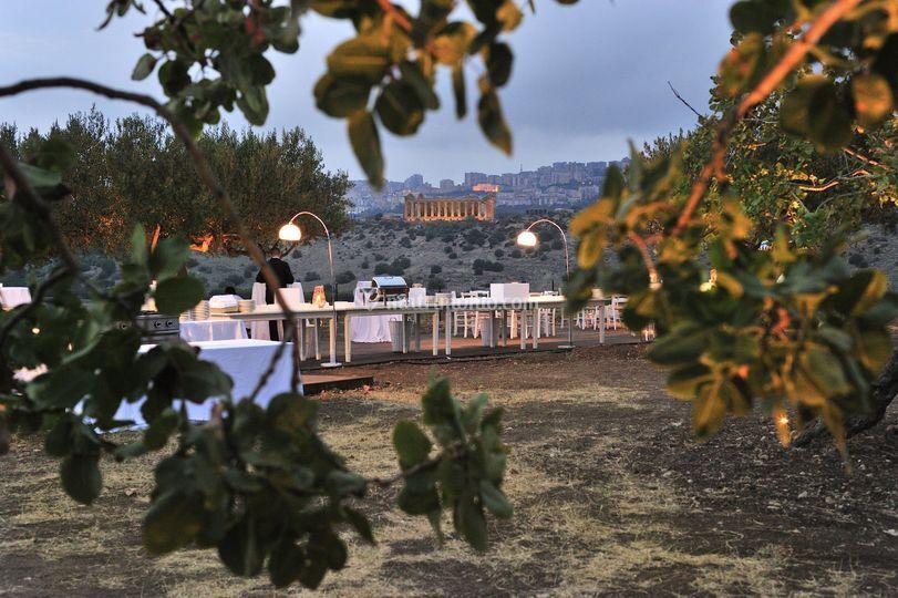 Villa Athena Farm