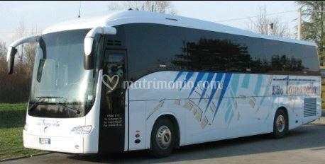 Tomasella autobus for Interno autobus