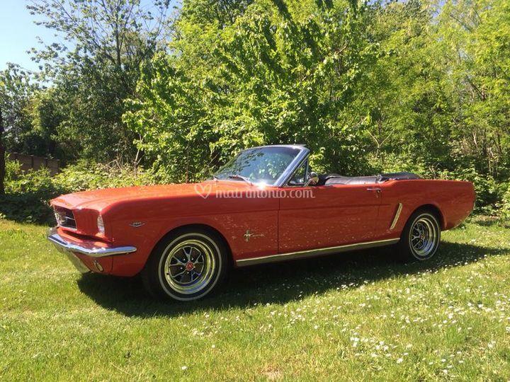 '64 1/2 Mustang Cabrio