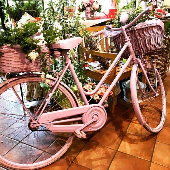 Mi sposo in bici