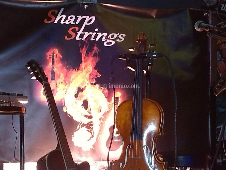 Sharp Strings Acoustic Duo
