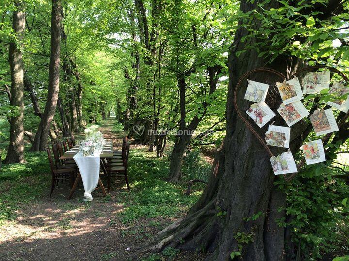 Matrimonio Bosco Toscana : Cena nel bosco di matildeventi foto