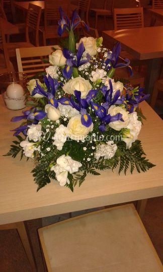 Composizione iris