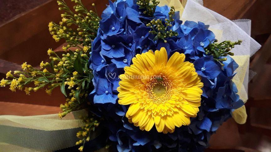 Blu e giallo