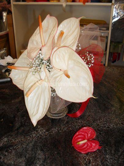 Bouquet anturium moderno