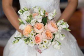Blosshome