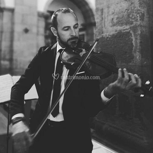 Violino per cerimonie