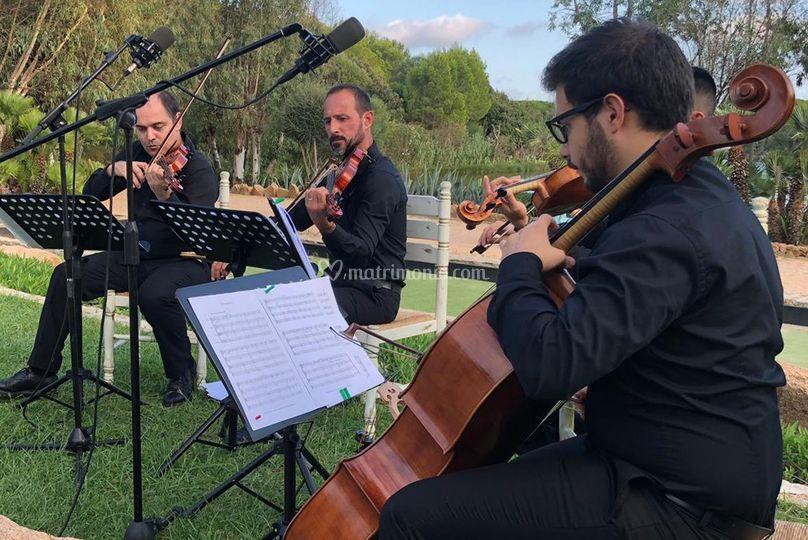 2 violini, viola e Violoncello