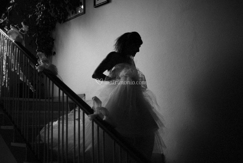 Wedding Photography & Fine Art