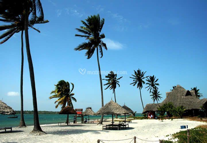 Isola di Mafia (Tanzania)