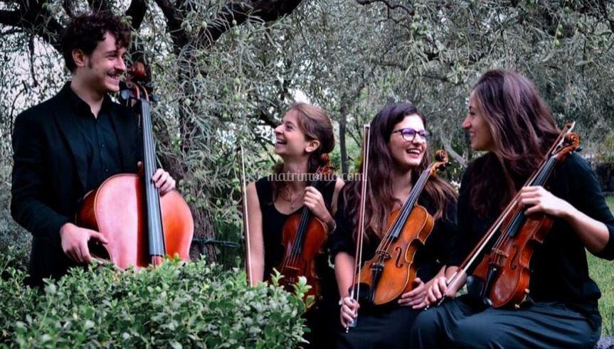 Quartetto d'archi per la festa