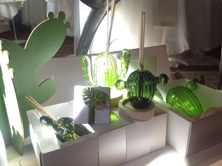 Cactus profumatori