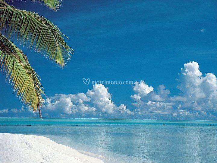 Il paradiso sulla terra